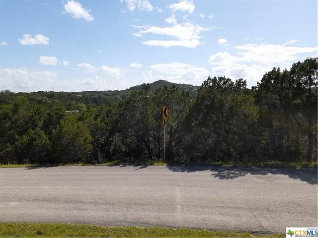 444 Herauf Drive, Canyon Lake, TX 78133 (MLS #445777) :: The Curtis Team