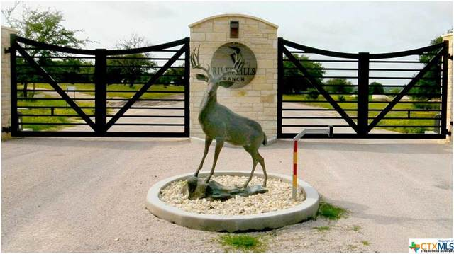 00 Old Mission Road, Kempner, TX 76539 (MLS #445829) :: Brautigan Realty