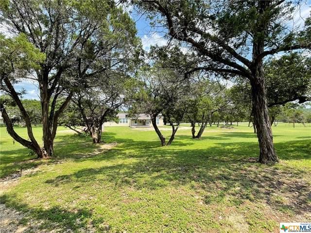 249 Elmer King Road, Belton, TX 76513 (MLS #446093) :: The Myles Group