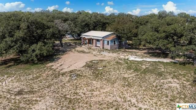195 Longhorn Road, Stockdale, TX 78160 (MLS #446209) :: Kopecky Group at RE/MAX Land & Homes