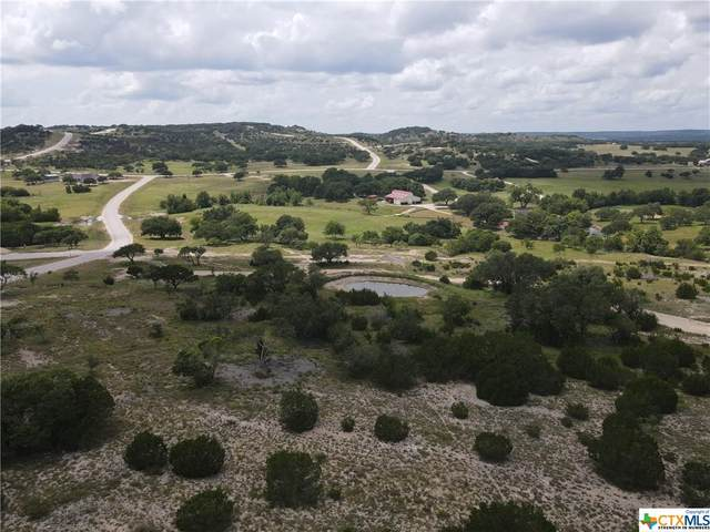 11 Majestic Creek Ranch Road, Blanco, TX 78606 (MLS #446319) :: The Curtis Team