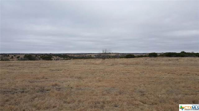 Lot 19 County Road 611, Hamilton, TX 76531 (MLS #446627) :: Texas Real Estate Advisors