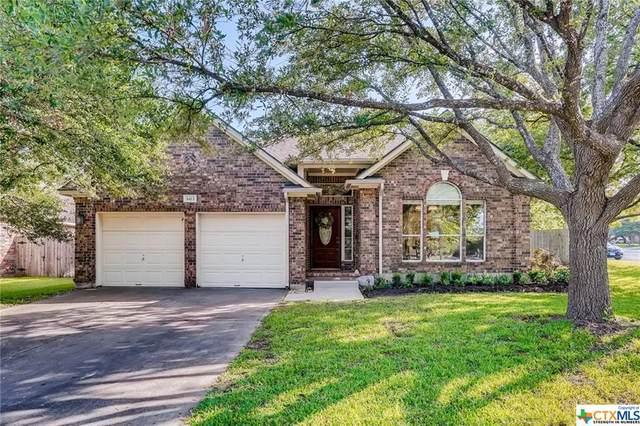 8413 Laughing Water Lane, Round Rock, TX 78681 (MLS #446655) :: Texas Real Estate Advisors