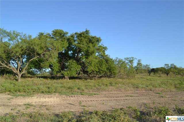 Block 4, Lot 9 Lampasas River Place Phase Two, Kempner, TX 76539 (MLS #446689) :: The Myles Group