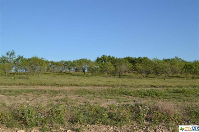 Block 4, Lot 11 Lampasas River Place Phase Two, Kempner, TX 76539 (MLS #446691) :: The Myles Group