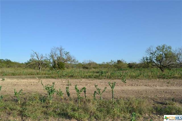Block 4, Lot 16 Lampasas River Place Phase Two, Kempner, TX 76539 (MLS #446711) :: The Myles Group