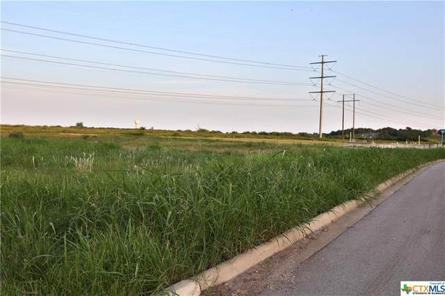 1450 Stone Russell, Salado, TX 76571 (MLS #446761) :: The Zaplac Group