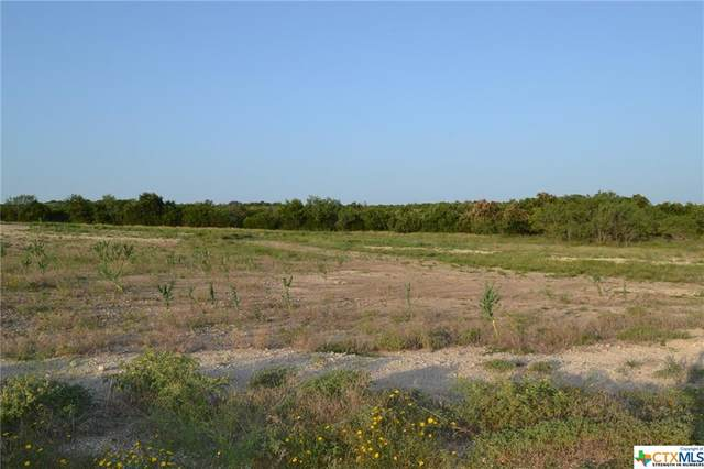 Block 5, Lot 1A Lampasas River Place Phase Two, Kempner, TX 76539 (MLS #446813) :: The Myles Group