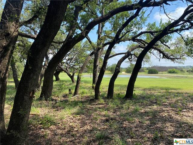 15500 S Highway 183, Lampasas, TX 76550 (MLS #446856) :: RE/MAX Family