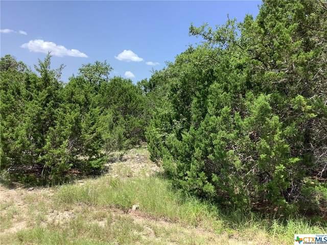 1297 Roadrunner Lane, Canyon Lake, TX 78133 (MLS #446871) :: Rebecca Williams