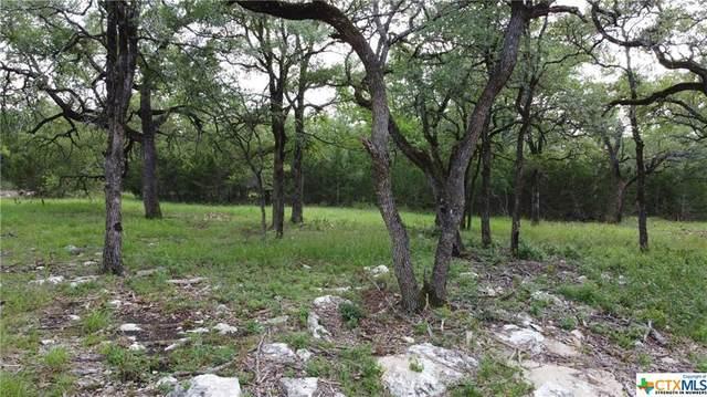 1000 Bear Creek Trail, New Braunfels, TX 78132 (MLS #446902) :: The Real Estate Home Team
