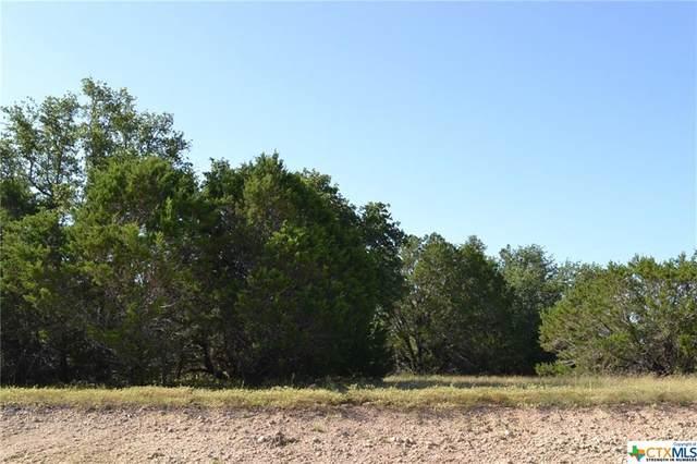 Block 7, Lot 14 Lampasas River Place Phase Two, Kempner, TX 76539 (MLS #446970) :: Rebecca Williams