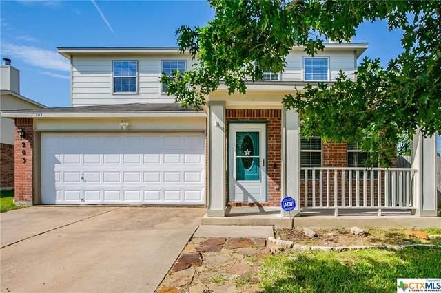 203 Echo Village Drive, Temple, TX 76502 (MLS #446988) :: RE/MAX Family