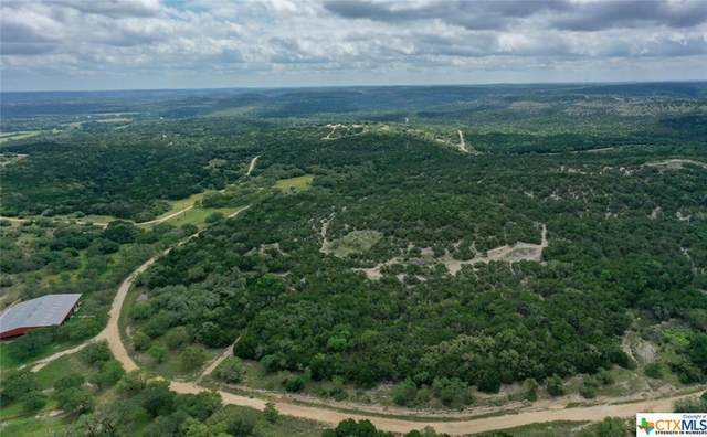 5800 Fm 32 Tract 3, Fischer, TX 78676 (MLS #447141) :: The Zaplac Group