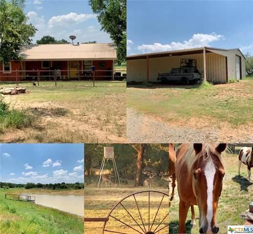 841 County Road 248, Richland Springs, TX 76871 (MLS #447262) :: Rebecca Williams