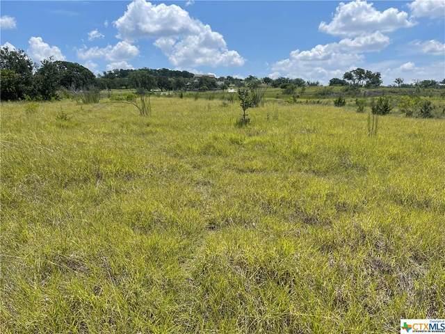 227 Bosque Trail, Marble Falls, TX 78654 (MLS #447325) :: Texas Real Estate Advisors