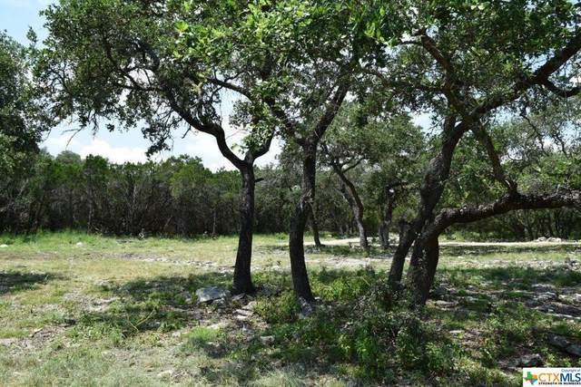 553 River Chase Drive, New Braunfels, TX 78132 (MLS #447372) :: Rutherford Realty Group