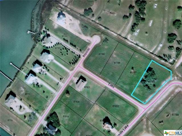 00 Lake Drive, Seadrift, TX 77983 (MLS #447536) :: The Zaplac Group
