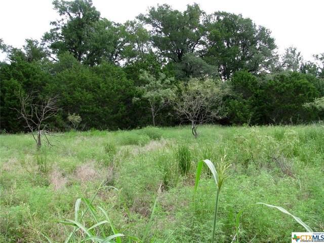 TBD County Road 160, Evant, TX 76525 (MLS #447559) :: RE/MAX Family