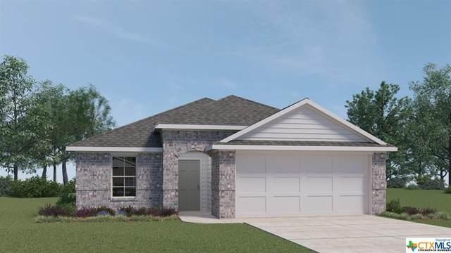 821 Adler Way, San Marcos, TX 78666 (MLS #447569) :: Kopecky Group at RE/MAX Land & Homes
