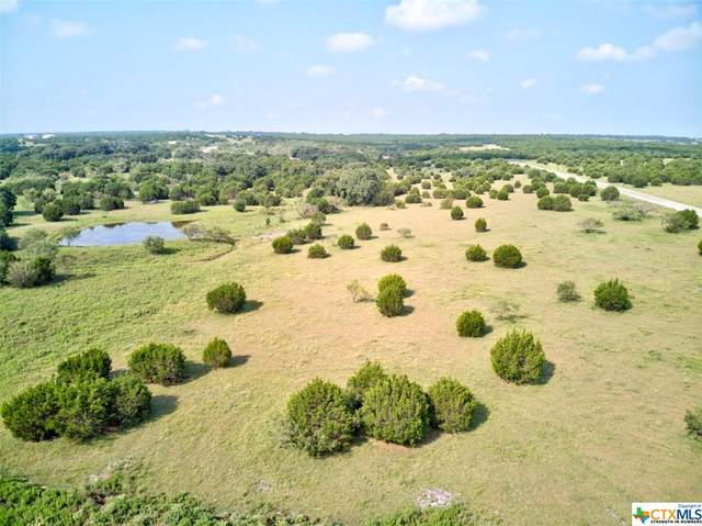 Lot 81 Reserve Drive, Lampasas, TX 76550 (MLS #447601) :: Rebecca Williams