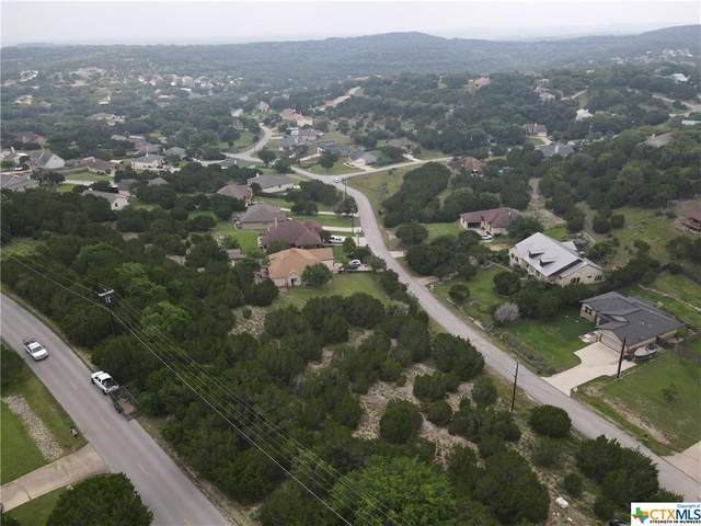 22335 Briarcliff Drive, Spicewood, TX 78669 (MLS #447861) :: The Real Estate Home Team
