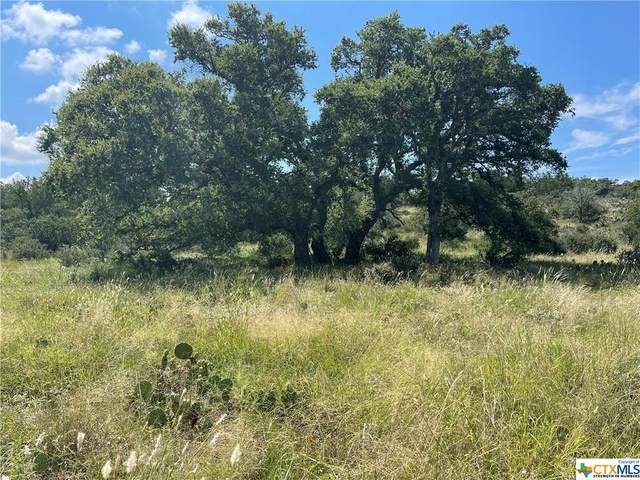 2 Comanche Ridge, Round Mountain, TX 78669 (MLS #448102) :: Kopecky Group at RE/MAX Land & Homes