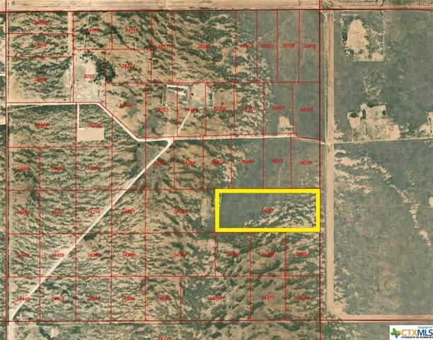 889 48-8 T&P Sec 31 Lots 43, 44, 45, Fort Stockton, TX 79735 (MLS #448225) :: Texas Real Estate Advisors