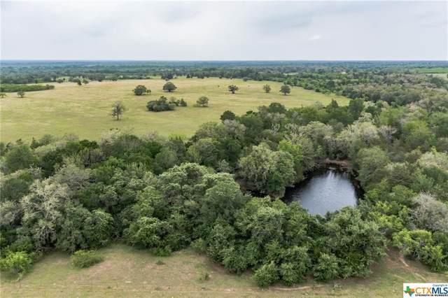 19 Hunt Lane, Flatonia, TX 78941 (MLS #448388) :: Kopecky Group at RE/MAX Land & Homes