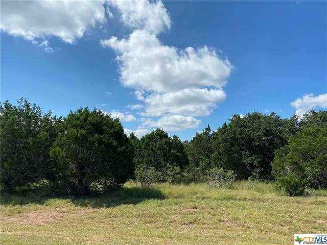 Lot 491R Mystic Breeze, Spring Branch, TX 78070 (MLS #448772) :: Kopecky Group at RE/MAX Land & Homes