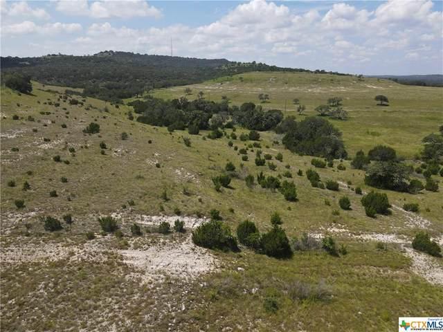 156 Cedar Mountain Drive, Marble Falls, TX 78654 (MLS #448870) :: Texas Real Estate Advisors