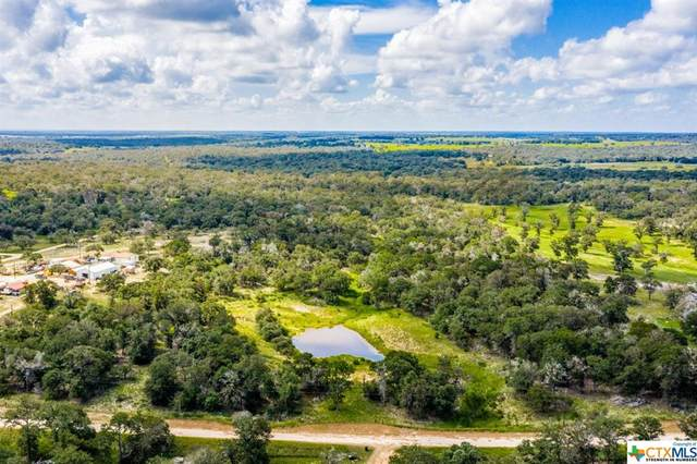 1115 Copperhead Road, Seguin, TX 78155 (MLS #448876) :: The Zaplac Group