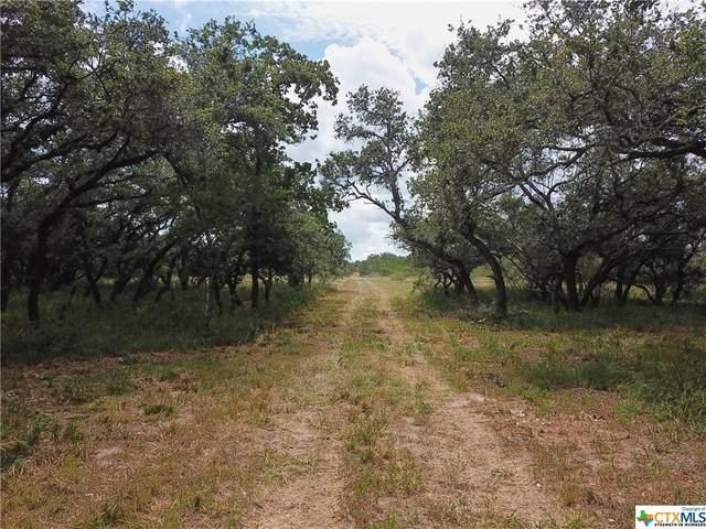 911 Franke Road, Goliad, TX 77963 (MLS #448952) :: Kopecky Group at RE/MAX Land & Homes