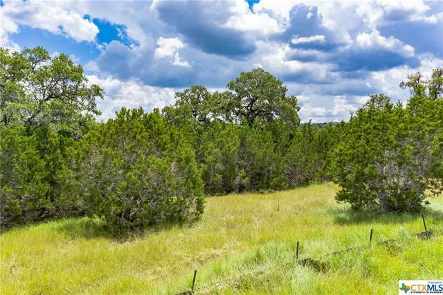 137 Fly Line Road, New Braunfels, TX 78132 (MLS #449040) :: The Real Estate Home Team