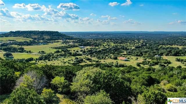 20489 Stillman Valley Road, Florence, TX 76527 (MLS #449044) :: Kopecky Group at RE/MAX Land & Homes