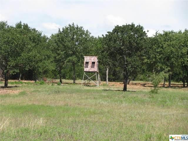 TBD-23 County Rd 102, Jacksboro, TX 76538 (MLS #449071) :: The Real Estate Home Team