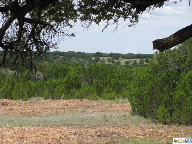 TBD-22 County Rd 102, Jonesboro, TX 76538 (MLS #449082) :: The Real Estate Home Team