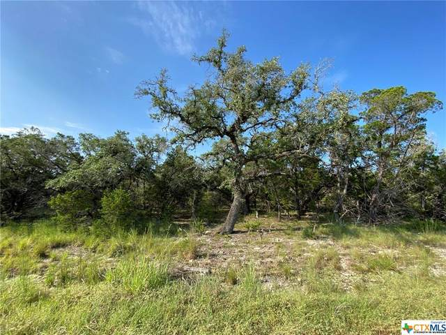 260 Restless Wind, Spring Branch, TX 78070 (MLS #449263) :: The Zaplac Group