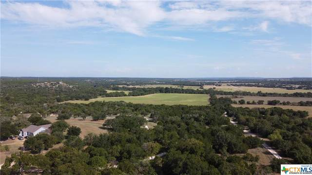 0 County Rd 223, Kempner, TX 76539 (MLS #449299) :: The Zaplac Group