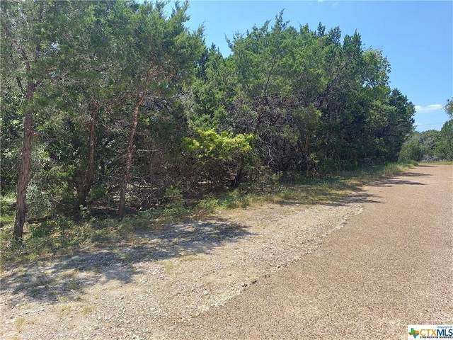 9 Canyon Trail, Morgans Point Resort, TX 76513 (MLS #449336) :: The Zaplac Group