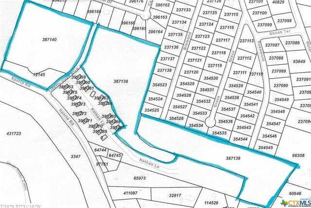 105 Liberty Oaks Boulevard, Belton, TX 76513 (MLS #449437) :: The Real Estate Home Team