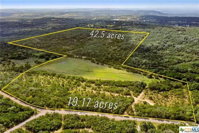 TBD Divide Pass Road, Blanco, TX 78606 (MLS #449450) :: Vista Real Estate