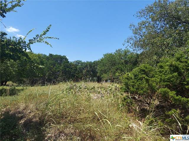7 Cottontail Drive, OTHER, TX 76513 (MLS #449532) :: Kopecky Group at RE/MAX Land & Homes