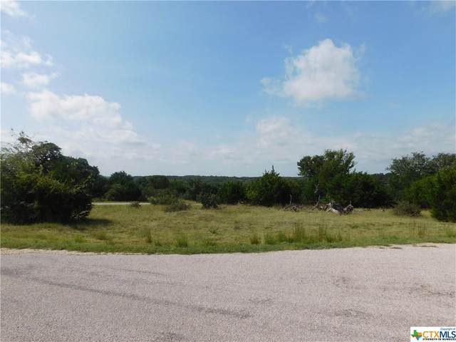 00 Lewis Todd, Blanco, TX 78606 (MLS #449536) :: The Zaplac Group