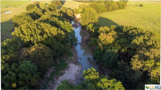 4425 County Road 174, Gatesville, TX 76528 (MLS #449574) :: The Real Estate Home Team