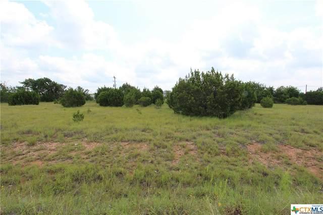110 Bevers Road, Liberty Hill, TX 78642 (MLS #449690) :: Brautigan Realty