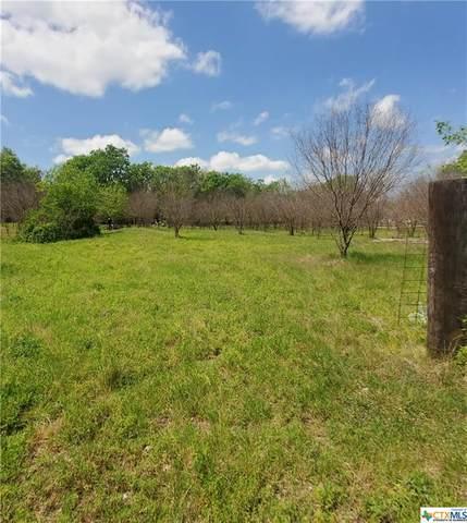 4888 Old Highway 81 Highway, New Braunfels, TX 78132 (MLS #449717) :: HergGroup San Antonio Team