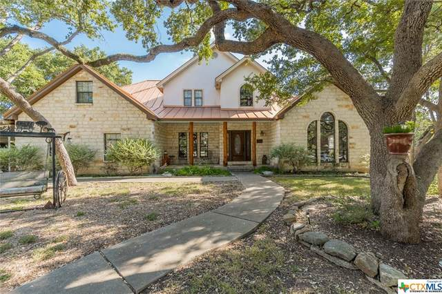4100 W State Highway 46, New Braunfels, TX 78132 (MLS #449781) :: RE/MAX Family