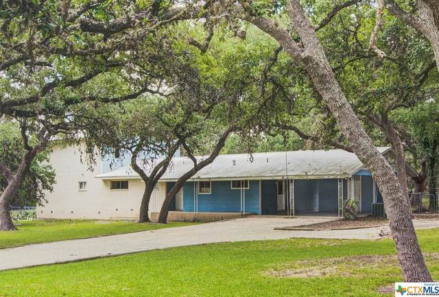 161 High Low Drive, New Braunfels, TX 78132 (MLS #449862) :: Kopecky Group at RE/MAX Land & Homes