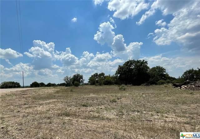 54 Estate Drive, Kempner, TX 76539 (#449953) :: Sunburst Realty